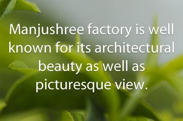 Jayshree Assam manjushree latestwork